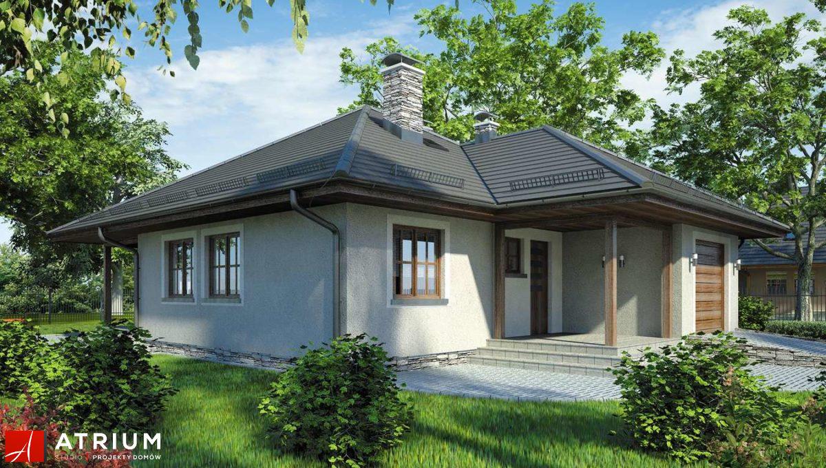 dom-steico-85m2-atrium-bursztyn-wejscie