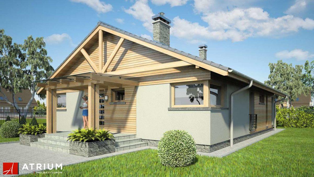 dom-steico-100m2-prefabrykowany-z-drewna-atrium-pelikan-xii-bok