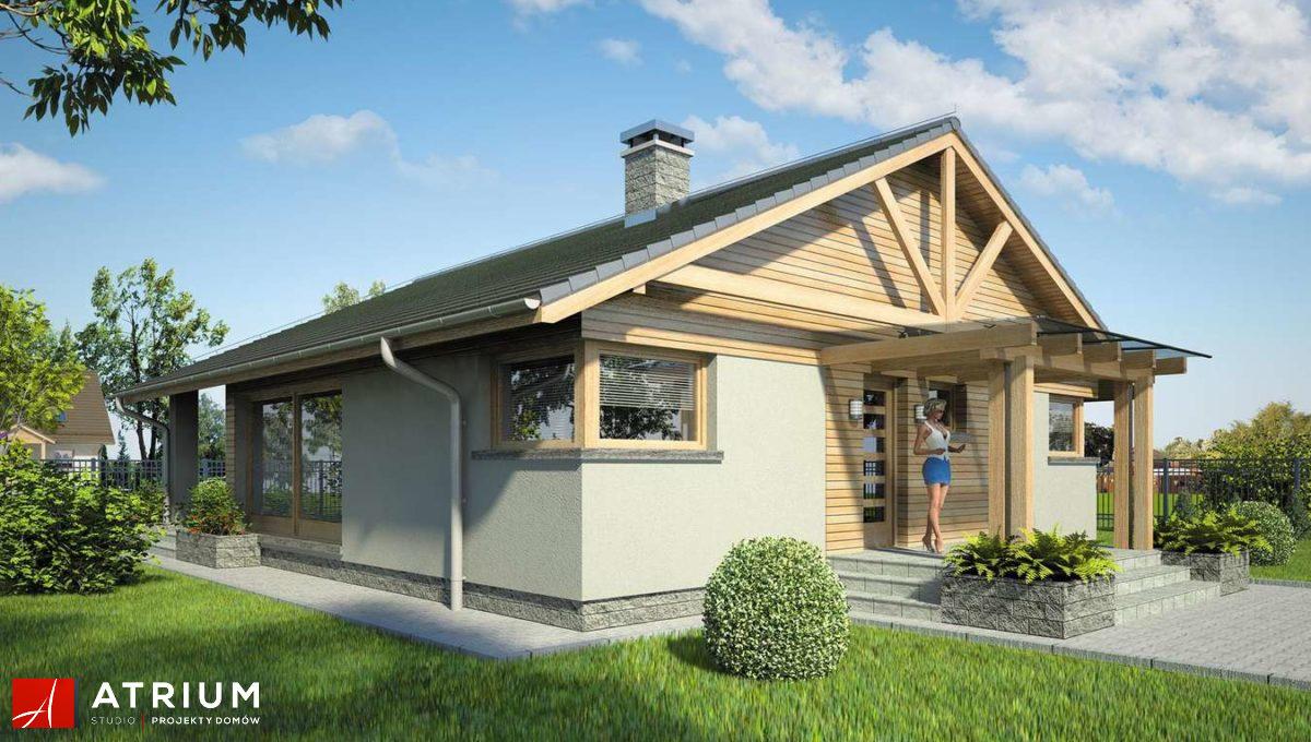 dom-steico-100m2-prefabrykowany-z-drewna-atrium-pelikan-xii-front